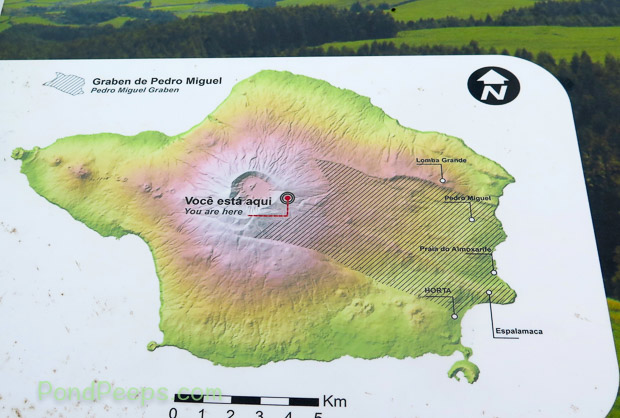 Map of Faial in Road Trip - Azores