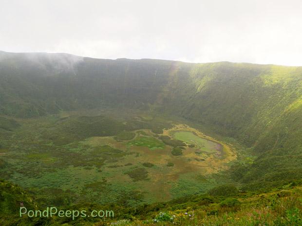 The caldera in Road Trip - Azores